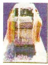 sri-sumathi-nidhigalu-bhavani-sripadaraja-mutt