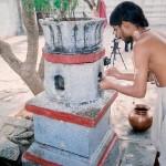 vidyadeesharu